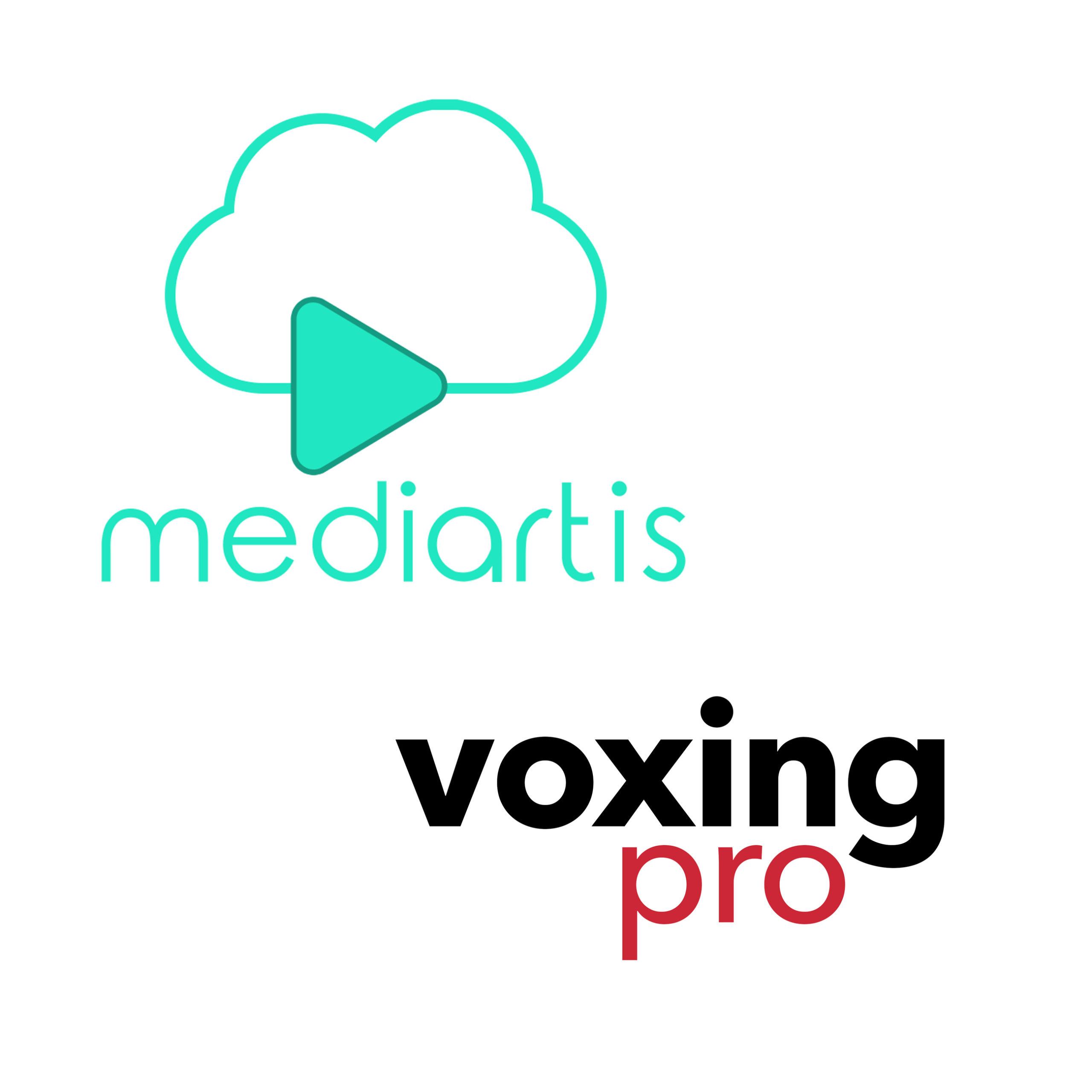 Mediartis voxing pro