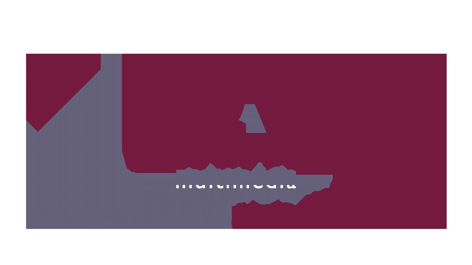 ACFA multimédia Studio M